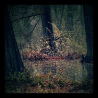 Once upon a time... by DianaCretu