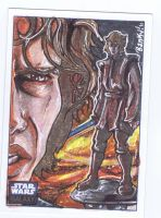 Star wars Galaxy 6: Anakin by BankyOne