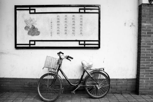 Bicycles and Poetry by RakelClark