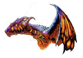 the Butterfly Dragon by acnero