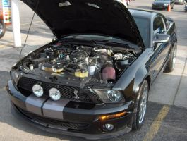 2007 Shelby GT500 - engine by Qphacs