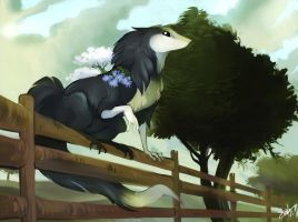 GIFT - Countryside esk by xXAlfaX