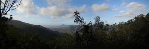 Black River Gorges Panorama IV by carrotmadman6