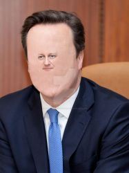 'Diddy' David Cameron by panicfaceproductions