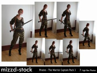 Pirates-Warrior Captain Pack 3 by mizzd-stock