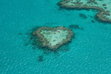 Heart of the Great Barrier Reef by unikorn