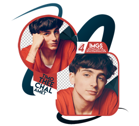 Png Pack 28 | Timothee Chalamet | by rociomogollon