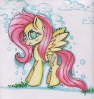 Flutters by Teacharms