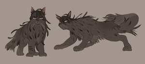 pineshadow concepts for juno by gardenslug