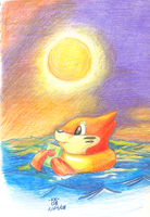 + Buizel in the Sunset +
