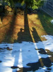 The Two Shadows. by Promandis