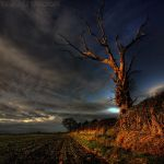 sunset catcher by photo-earth
