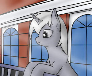 The view by Antnoob