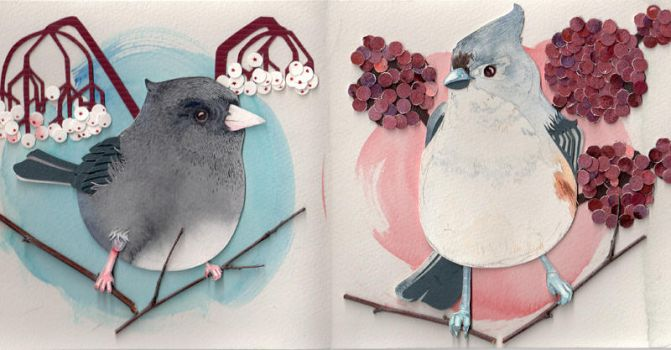 Junco and Tufted Titmouse by folderol