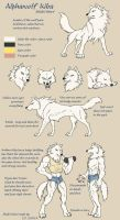 Alphawolf Kiba model sheet by J-C