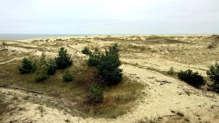 Curonian Spit :October: 8 by J-dono