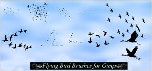 Gimp Flying Birds by Geosammy