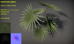 Free Parviflora pack by Yughues