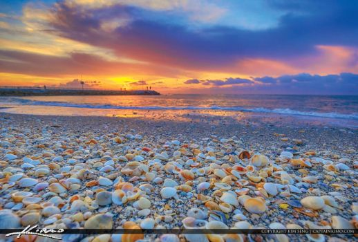 Jupiter-Inlet-Seashells-Sunrise-at-the-Jetty by CaptainKimo