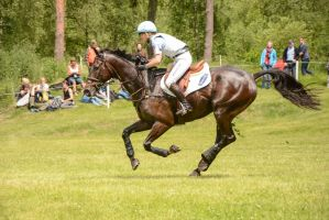 Eventing Stock - Full Speed Gallop by LuDa-Stock
