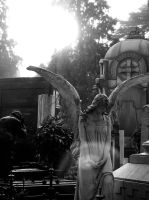 Monumental Cemetary 09 by MabtheEvil