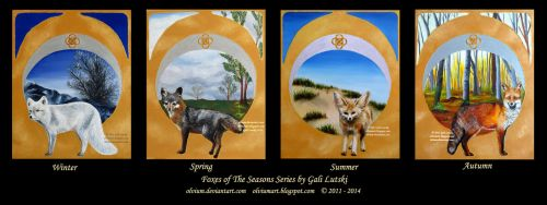 Foxes of The Seasons Series by Olvium