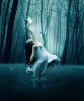 magic of dance by Mcmedeiros