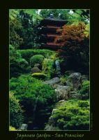 Japanese Garden by Tricia-Danby