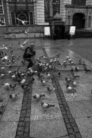 Dancing with birds by Tarat