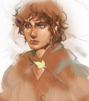 Frodo junk by Athena-chan