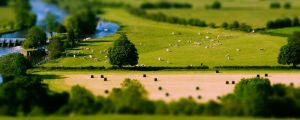 Tilt-Shift by Pwn4g3--P13