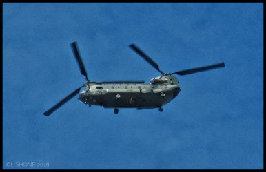Chinook by Stumm47