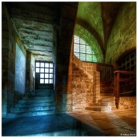 Two Face Cellar by JeRoenMurre