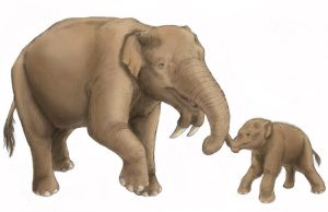 Deinotherium Mother and Calf by tallydragon