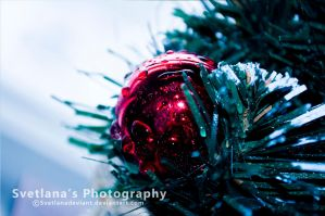 Feel the holiday 2 by Svetlanadeviant