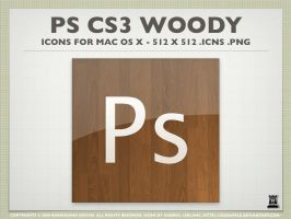 Photoshop Wood Icons by igabapple
