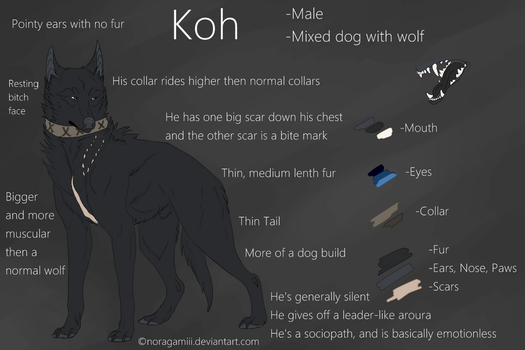 Koh's 2016 Ref (OLD) by Noragamiii