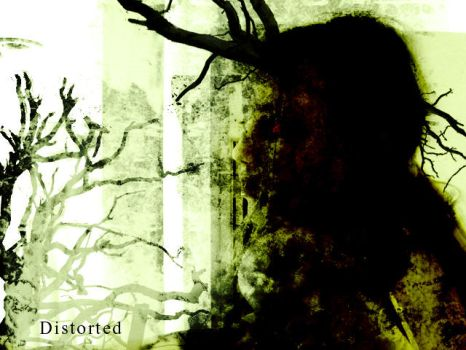 Distorted by illoS