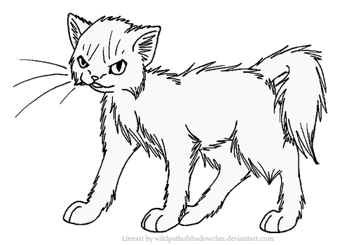 Evil Longhaired Warrior Lineart by WildpathOfShadowClan
