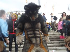 The Wolfman by Collioni69