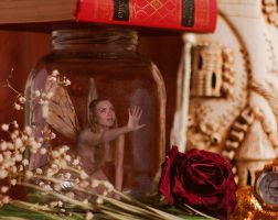 Prisoned Fairy by Alsiza