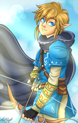 Link [Breath of the Wild] by flamingmarshmallows