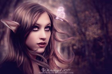 Autumn Liaison by whitewinged