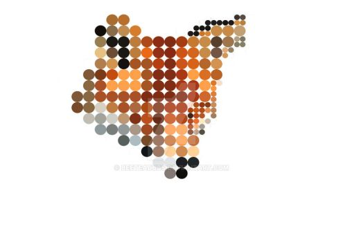 Fox In Dots by BeeTeaDubs