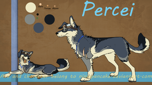 Percei Reference by NinjaPancake