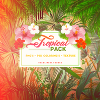 PACK Tropical by CottonCandyTime