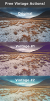Free Vintage Actions by frozencolor