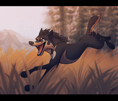 On A Run by InstantCoyote