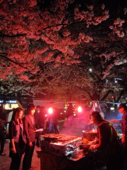 Cherry Blossom Night Life by master-tang666x