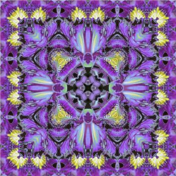 PURPLE IRIS Kaleidoscope by Peaches1950